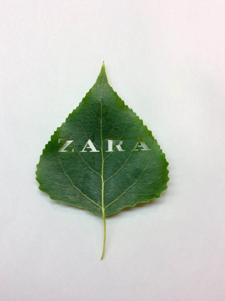 Troquelado hoja Zara